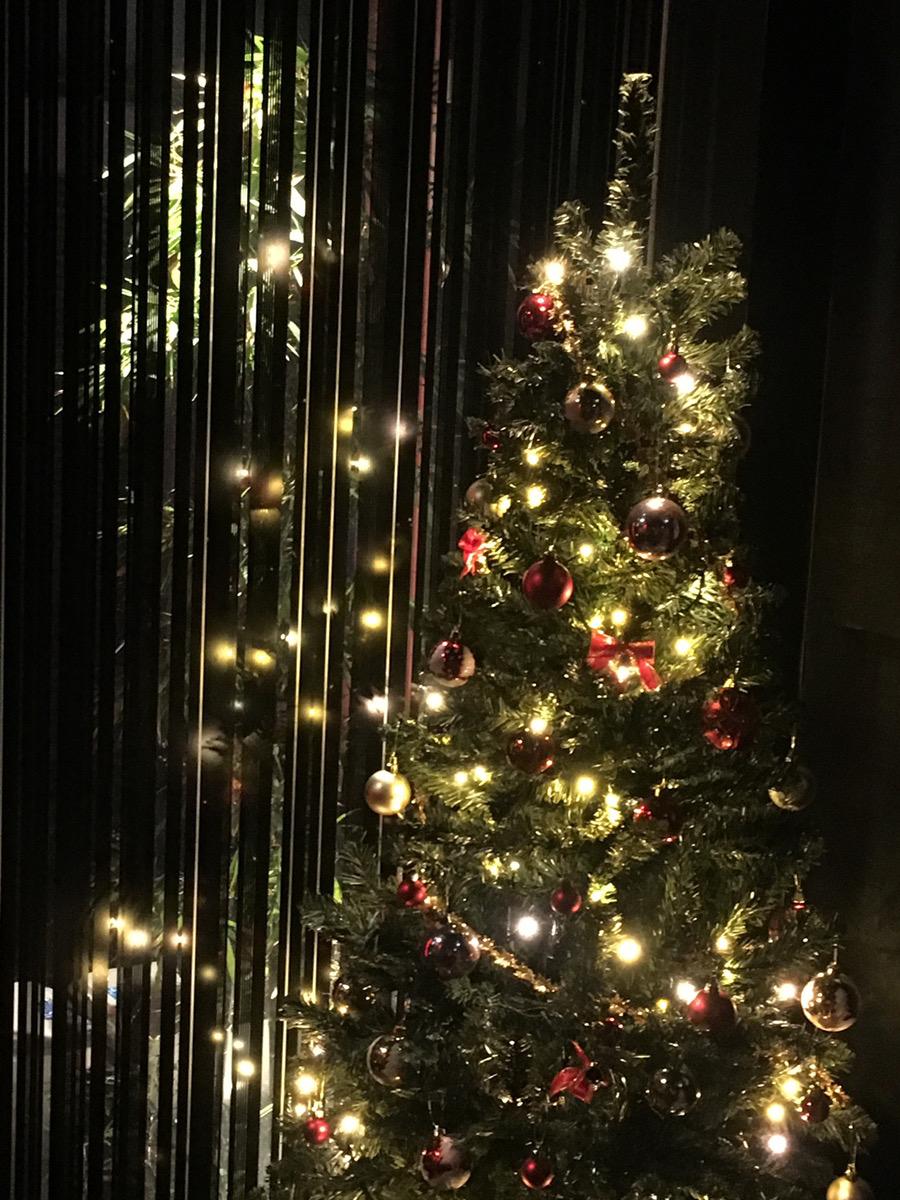 関内でクリスマス限定ディナーなら「鉄板焼き「円居横浜関内」